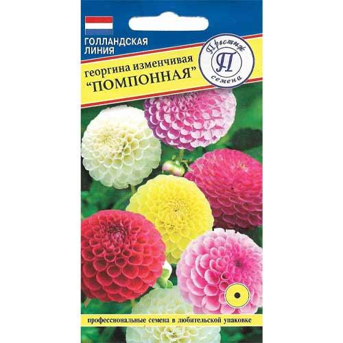 Георгина Помпонная, смесь окрасок Престиж изображение 1 артикул 65826