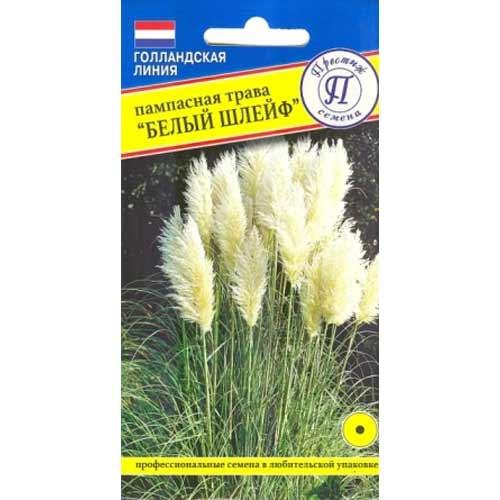 Пампасная трава Белый шлейф Престиж изображение 1 артикул 65853