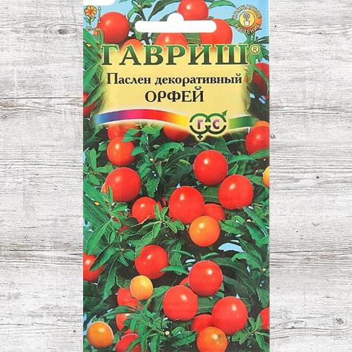 Паслен декоративный Орфей Гавриш изображение 1 артикул 66100