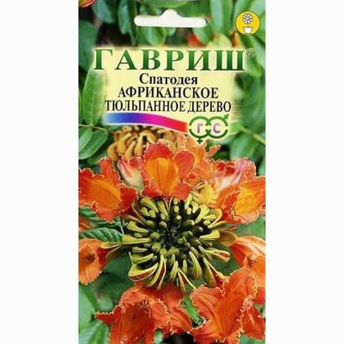 Спатодея Африканское тюльпанное дерево Гавриш изображение 1 артикул 66140