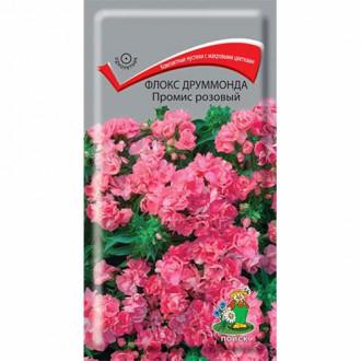 Флокс Друммонда Промис розовый Поиск изображение 8