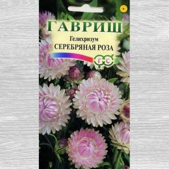 Гелихризум Серебряная роза Гавриш изображение 3