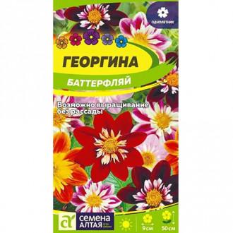 Георгина Баттерфляй, смесь окрасок Семена Алтая изображение 8