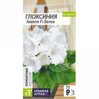 Глоксиния Аванти белая F1 Семена Алтая изображение 5