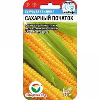 Кукуруза Сахарный початок Сибирский сад изображение 3