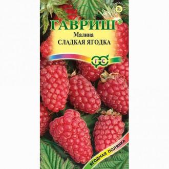 Малина Сладкая ягодка Гавриш изображение 7