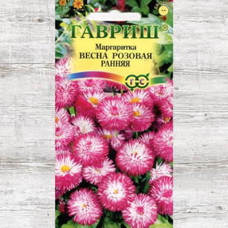 Маргаритка Весна розовая ранняя Гавриш изображение 2