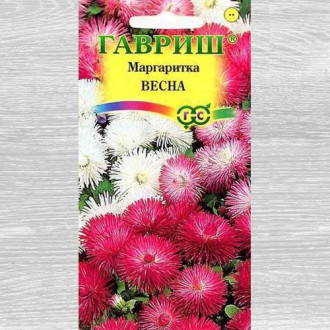 Маргаритка Весна, смесь окрасок Гавриш изображение 4