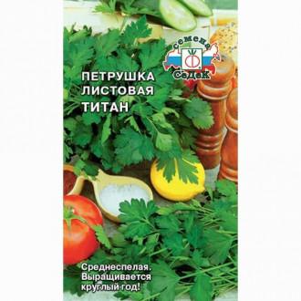 Петрушка листовая Титан Седек изображение 3