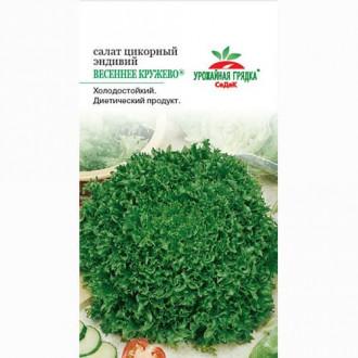 Салат эндивий Весеннее кружево Седек изображение 8