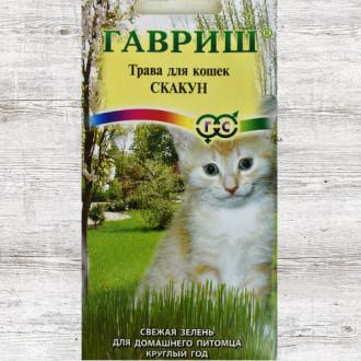 Трава для кошек Скакун Гавриш изображение 2