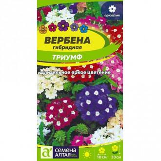 Вербена Триумф, смесь окрасок Семена Алтая изображение 3