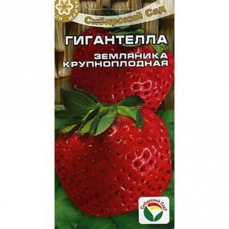 Земляника крупноплодная Гигантелла Сибирский сад изображение 1