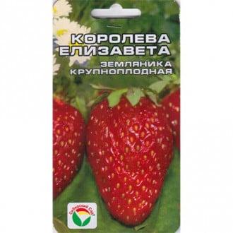 Земляника крупноплодная Королева Елизавета Сибирский сад изображение 2