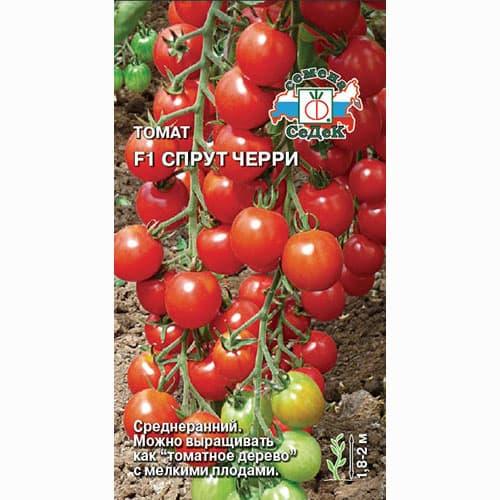 Томат-дерево Спрут Черри F1 Седек изображение 1 артикул 65190