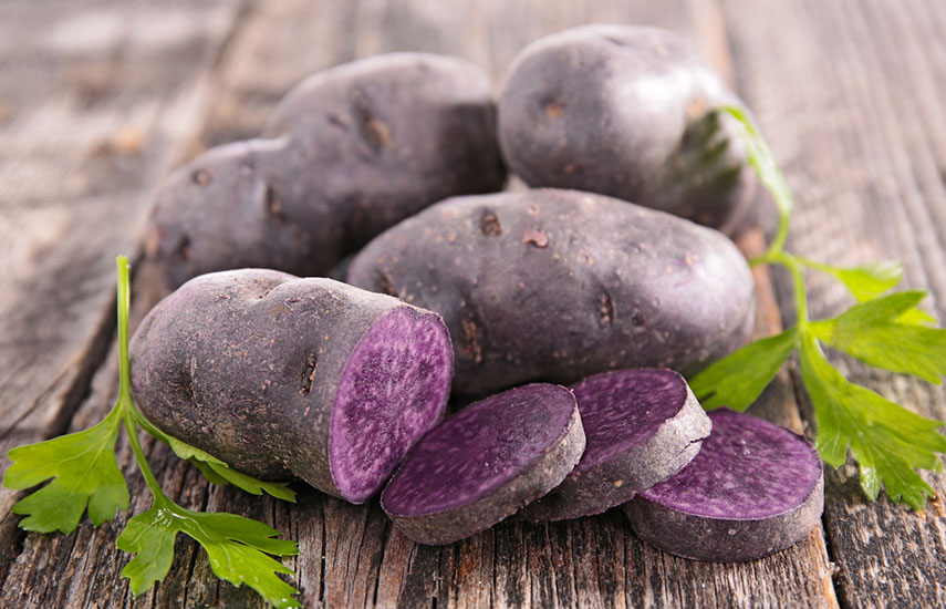 фиолетовый картофель как посадить и вырастить