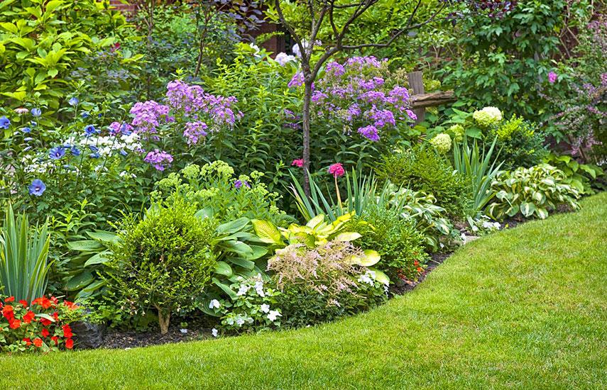 садовый участок с чего начать планирование