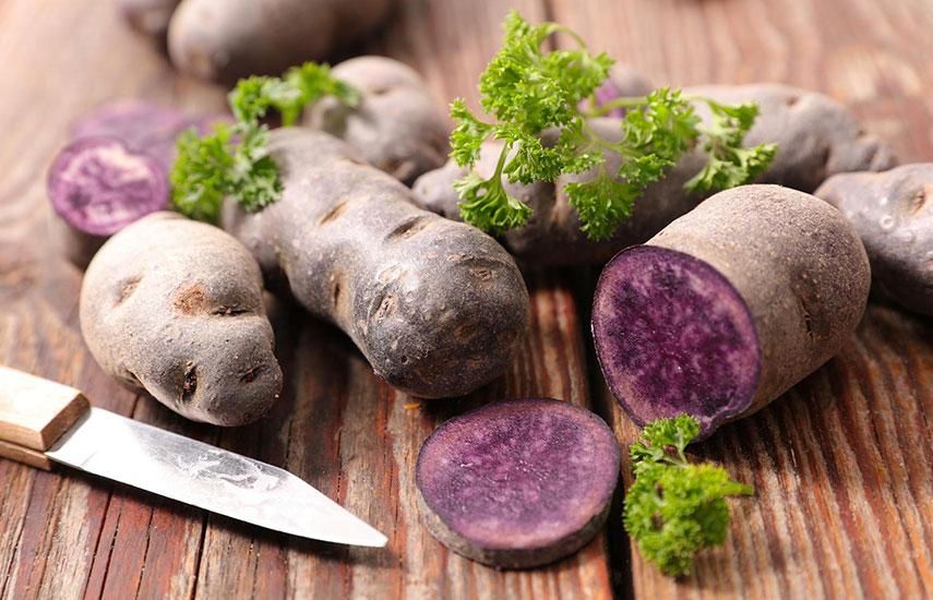 фиолетовый картофель как выращивать