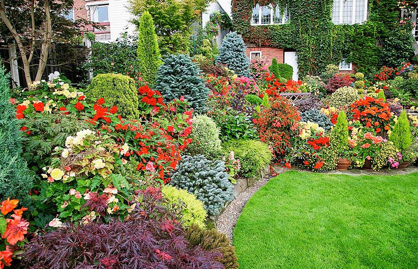 как составить план сада на участке со сложным рельефом