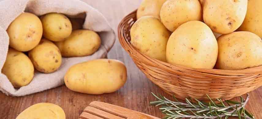 описание, фото и характеристика ранних сортов картофеля фото 8