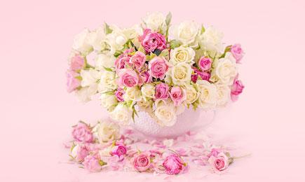 Розовый сюрприз! | Беккер.Бу