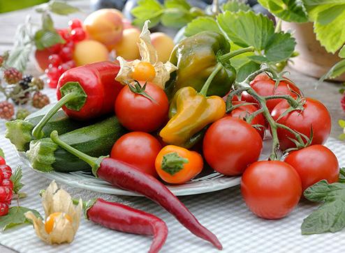 Каталог - -50% на семена овощей и цветов - Беккер.Бу Беларусь