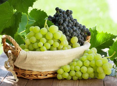 Каталог - -50% на саженцы винограда - Беккер.Бу Беларусь
